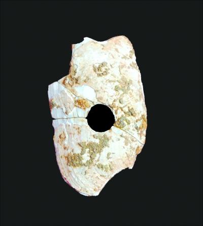 华南史前考古获关键性突破