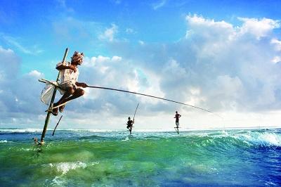 斯里兰卡独一无二的高跷海钓