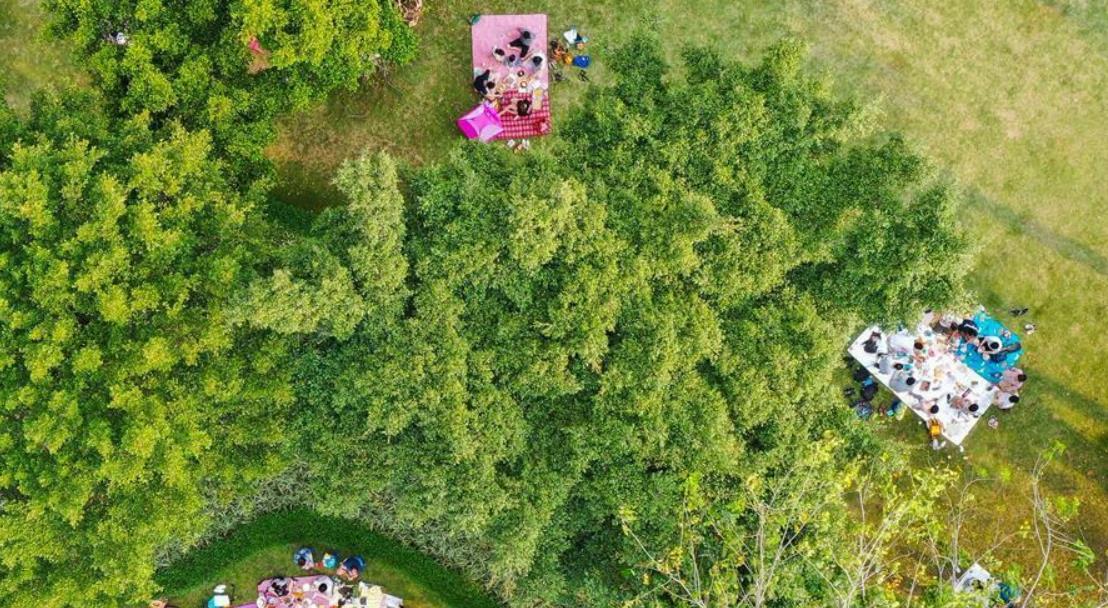 广州:发展公园引客来