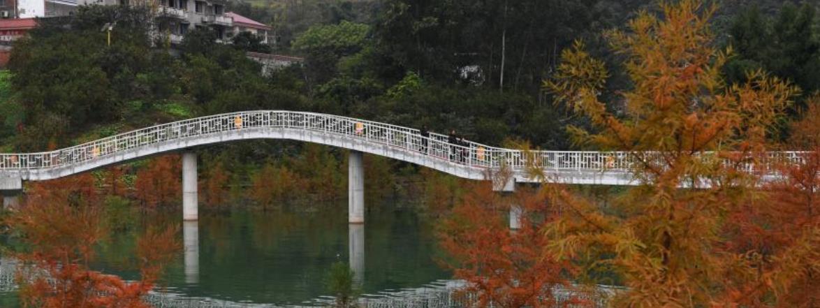 从臭水沟到风景区:三峡移民村的旅游致富路