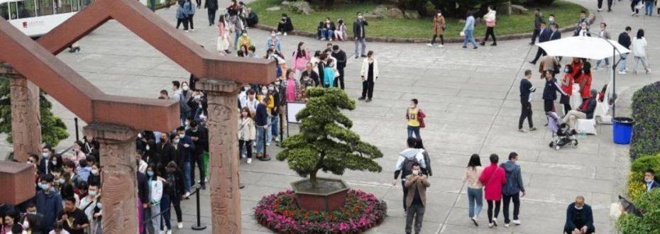 三星堆博物馆访客量大幅增长